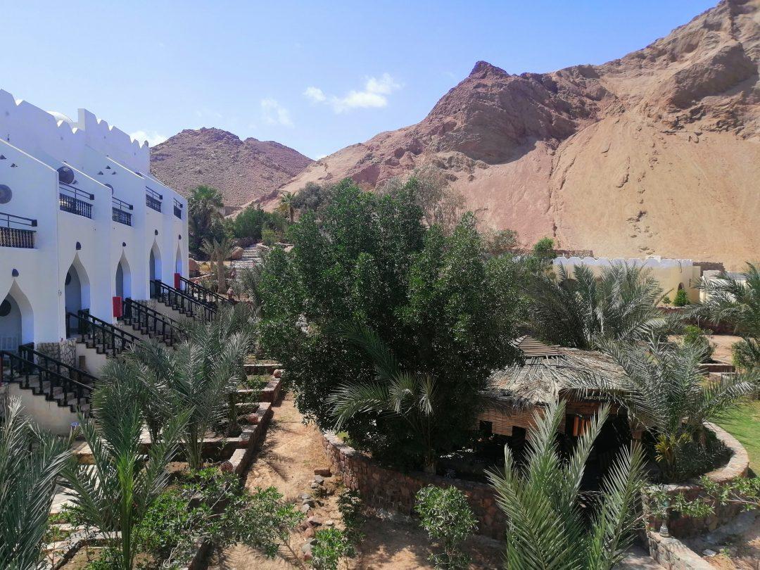 Bedouin Moon Hotel – Garden View