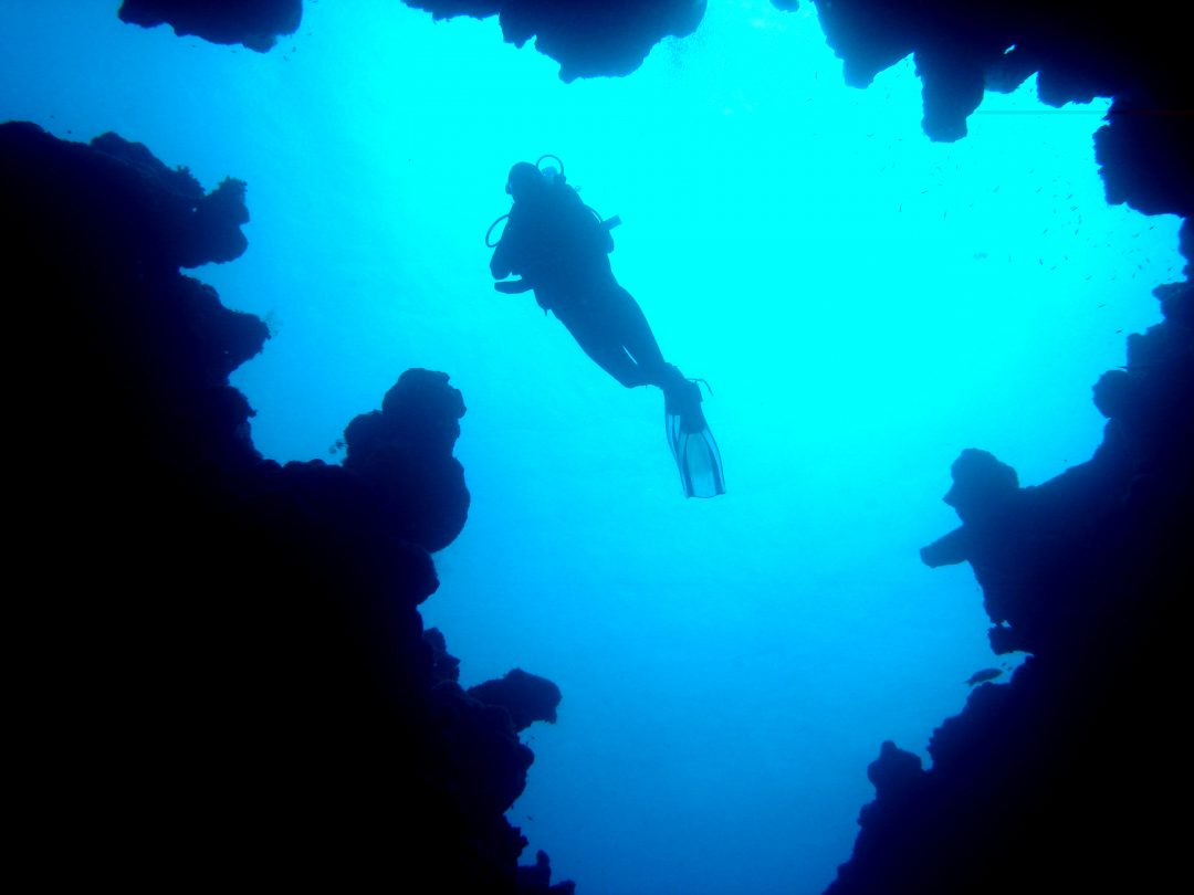 guided dives – Canyon