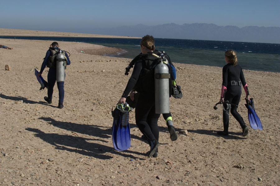 guided dives – divers entering