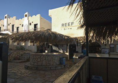 Reef-2000-Dive-Club-3
