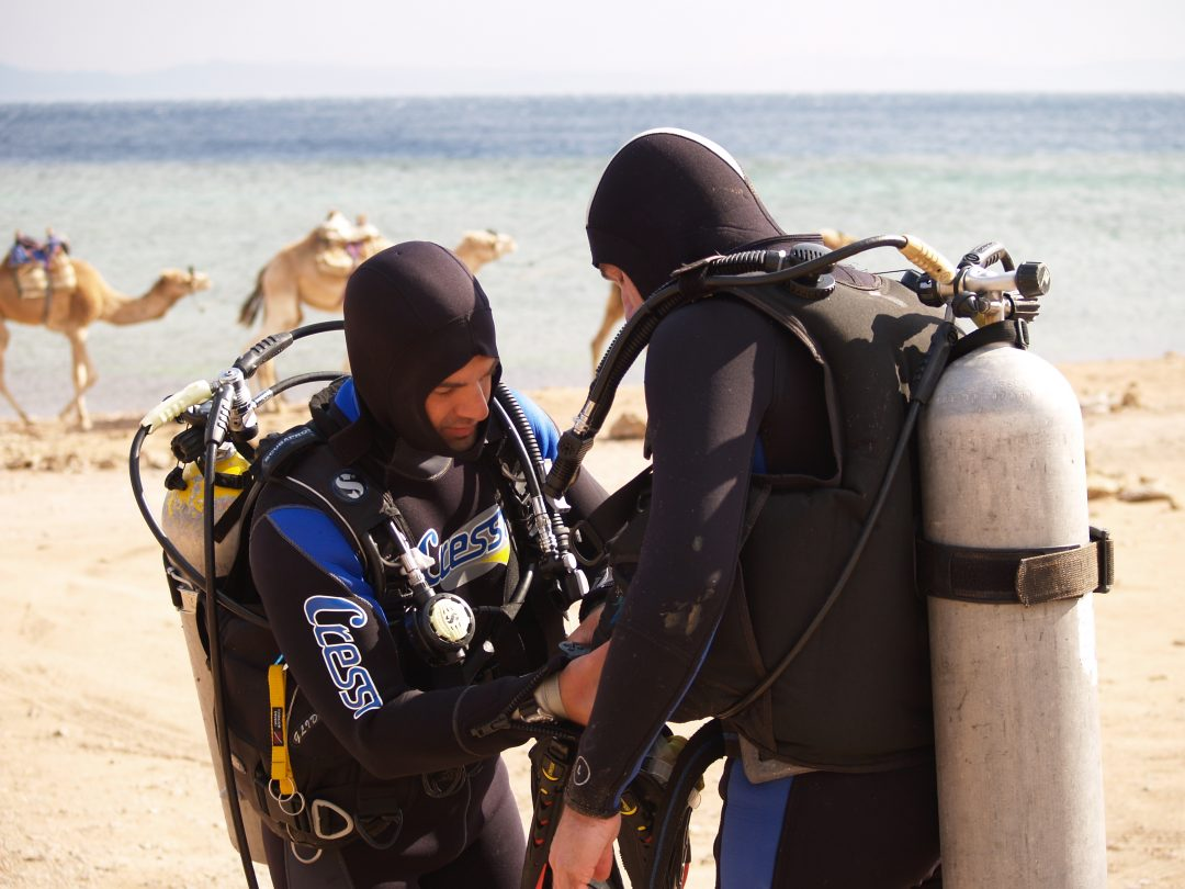 padi courses – kitting up on camel safari (Close up)