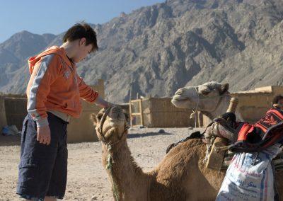 camels & kid